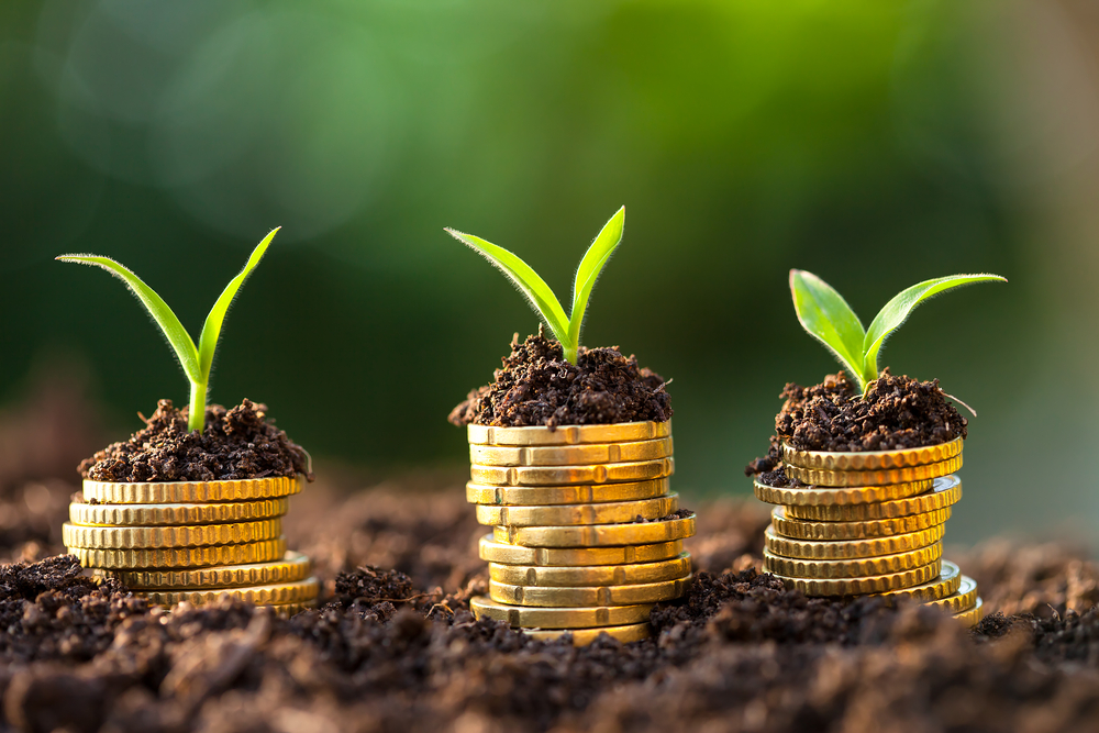 Agriculture financing