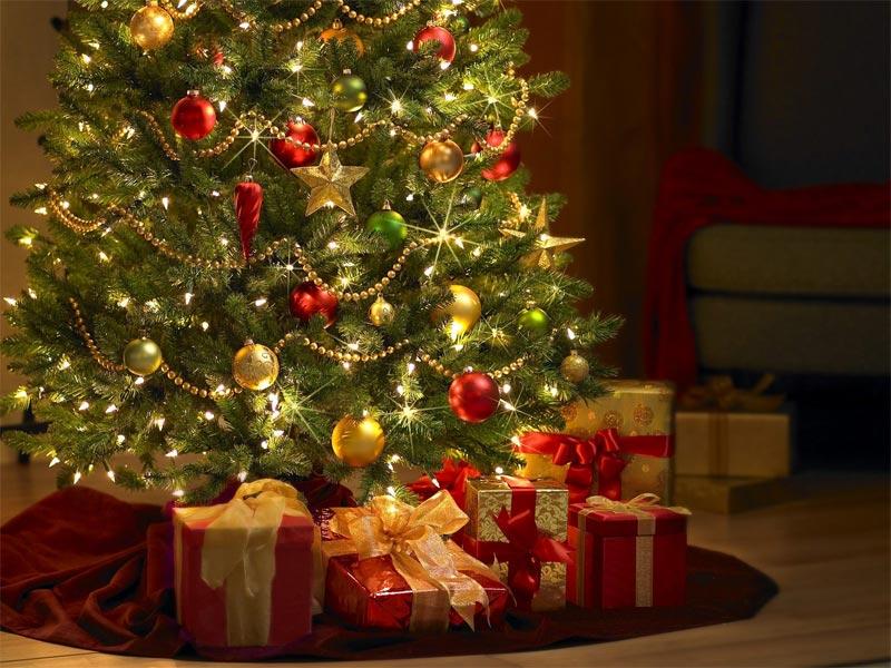 VENISSIEUX | Sapins de Noël > le compostage favorisé