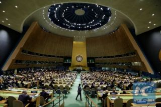 •UN General Assembly during a session