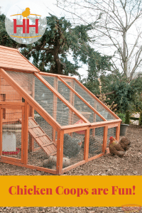 chicken coops are fun