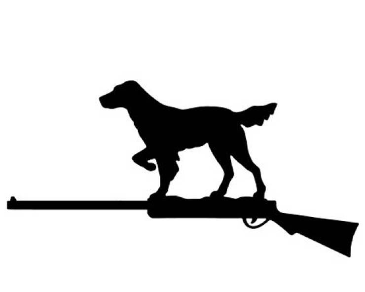 usa dog gunshot emergency hospital labrador pit bull newsfry