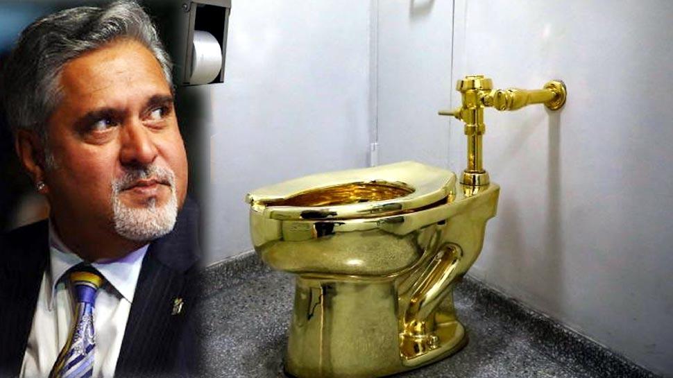 लंदन वाले घर में सोने का टॉयलेट यूज करते हैं विजय माल्या, इस लेखक का दावा