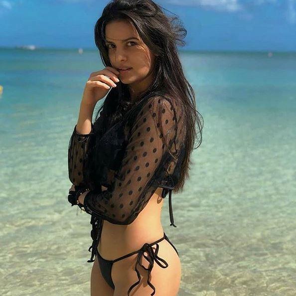 natasha stankovic whom hardik pandya is going to marry photo and video here