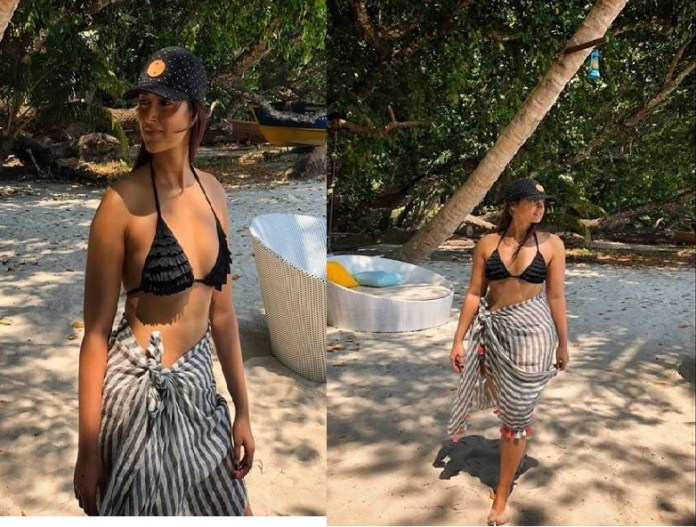 ileana dcruz ileana dcruz hot photo ileana in bikini ileana hot pic