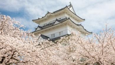 Conheça 5 Curiosidades Incríveis Sobre o Japão