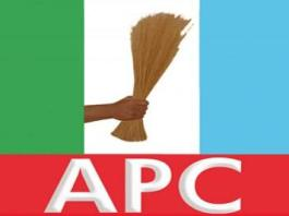 Wpid Apc Logo X