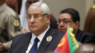 Wpid Egypt S Interim President