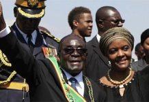 Award-winning Zimbabwean writer Chenjerai Hove has called on Grace Mugabe, the wife of Zimbabwe?s leader Robert Mugabe, to hand back her PhD.