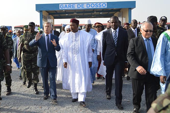 Bollore Niger