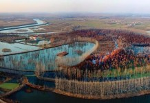 A bird view of core wetland at Chishanhu, literally translated as Pond Cypress Lake, in eastern China's Anhui province. (Photo provided by Lai'an County)