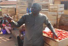 Tomatoes Importation