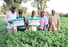Farmers in Nigeria