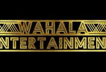 Wahala Entertainment Media Studio