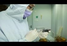 novel coronavirus test