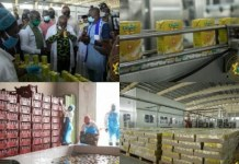 President Commissions Million Dollar Ekumfi Fruits Processing Factory