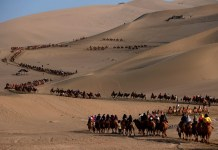 Tourists visit the Crescent Spring in Dunhuang, Northwest China's Gansu Province on Oct. 3. Photo by Zhang Xiaoliang/People's Daily Online
