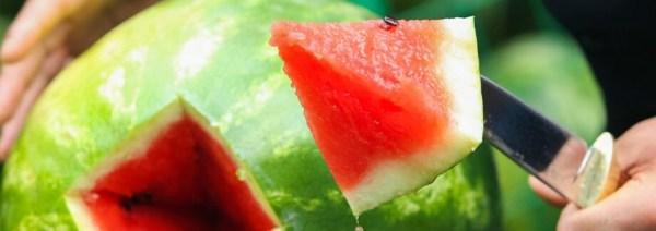 Как выбрать сладкий арбуз или сочную дыню | Новости Гомеля