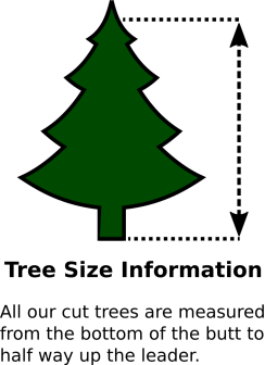 Tree size measurement information