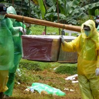 Global virus cases near million as US records youngest death