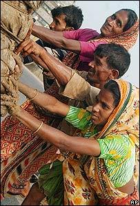Bangladeshi labourers