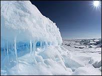 La isla de Ellesmere está ubicada a 800 kilómetros del Polo Norte.