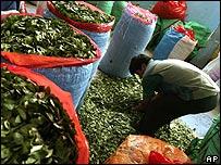 Hojas de coca en un mercado boliviano