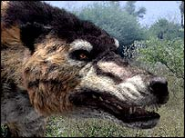 Algunos mam�feros se beneficiaron de la extinción de los dinosaurios.