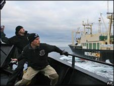 Pegiat antipenangkapan ikan paus