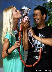 Model and TV host Beth Ostrosky (L) kisses a Chinese Crested dog named Rascal