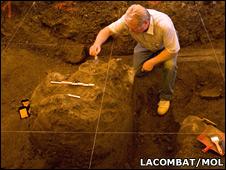 Mammoth skull (Lacombat/Mol)