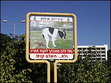 Anti-dog fouling notice in Eilat