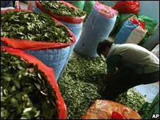 A man fills bags with coca leaves at the coca market in La Paz, Bolivia