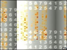 Numbers/DNA