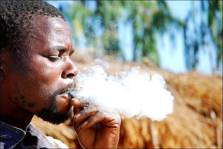 Man smoking tobacco leaf in Malawi.