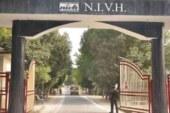 एनआइवीएच में दृष्टिहीन छात्रा से यौन शोषण का आरोपित छात्र सस्पेंड