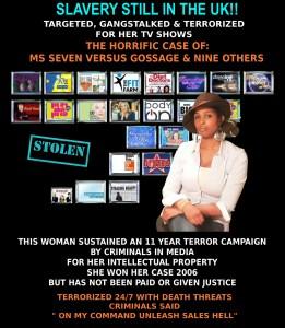 Seven & Her Stolen TV Shows