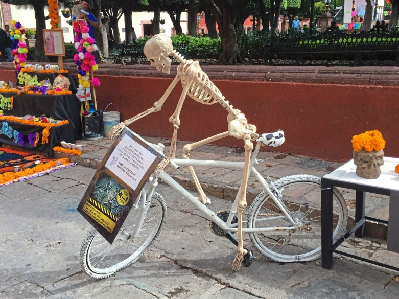 Distinction During the Day of the Dead celebrations, The Cyclists Club of San Miguel de Allende, Mexico displays a skeleton on a white bike representing all those bikers who were killed. credit Patricia Sheridan