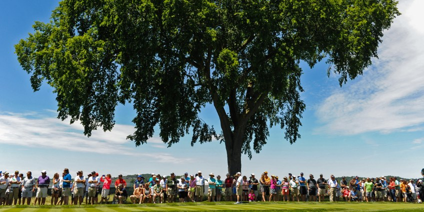 Spectators grab a bit of shade under a large tree on the second hole fairway as they watch practice rounds. (Matt Freed/Post-Gazette)