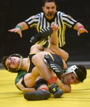 Gabe Falo, from North Allegheny, and Tony Zona, from Penn-Tafford, tangle at the WPIAL wrestling quarter finals on Wednesday, Feb. 1, 2017 at North Allegheny High School in Wexford. Zona won by decision. North Allegheny defeated Penn-Trafford 42-28. (Haley Nelson/Post-Gazette)