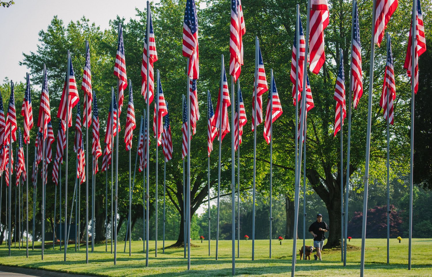A man takes a morning run with his dog past the Avenue of 444 Flags at Hillcrest Memorial Park cemetery on Thursday, May 24, 2018, in Hermitage. The flags were raised during the Iran hostage crisis and mark the 444 days of captivity. (Andrew Rush/Post-Gazette)
