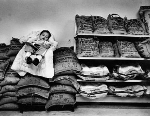 Omar Anbari, 22 months, sleeps peacefully on top of some bags of rice at Anbaris Eastern Foods in the Strip, September 1984. (John Kaplan/The Pittsburgh Press)