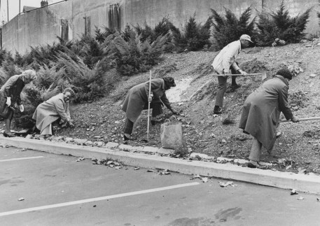From left, Agnes Wilson, Mary N. Smith, Charles Love, Edna Wood and Ethel Pettigrew plant tulip bulbs at Hill House in November 1974. (Howard R. Moyer/The Pittsburgh Press)