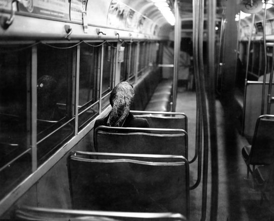 A lone trolley passenger on Nov. 30, 1952. (Pittsburgh Press photo)