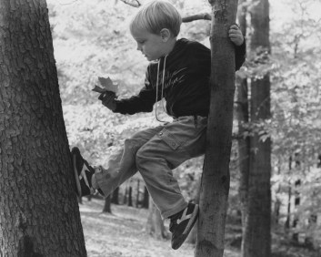 Oct. 14, 1985: Joseph Medius, 6, props himself between two trees at Bird Park in Mt. Lebanon. (Darrell Sapp/Post-Gazette)