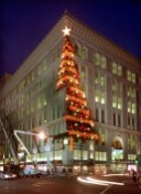 The tree as it looked in 1998. (Steve Mellon/Post-Gazette)