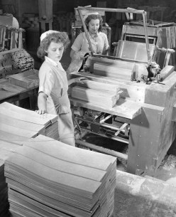 When the sheets of gum leave the rolling machine, this machine cut sheets into individual sticks. The gum is pliable and easily broken by this point of the production process. Picture taken March 21, 1948. (Pittsburgh Press)