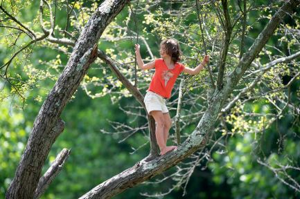 Marlowe Cramer, 7, from Allison Park, climbs around a tree in Frick Park, Tuesday, Jul. 28, 2020, in Regent Square. She was in the park with her family while waiting for friends. (Pam Panchak/Post-Gazette)