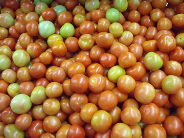 Island farmers will market locally grown tomatoes during their trip to New York. (Credit: Wikipedia)