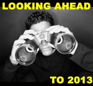 Looking ahead logo NIMB 2013