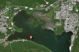 The excavation directly impacted approximately 60 acres of wetlands in the Guánica Bay and indirectly damaged about 100 more. (Credit: Google Maps)